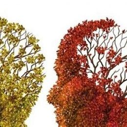 Cómo saber si es Alzheimer. Las claves para envejecer mejor: