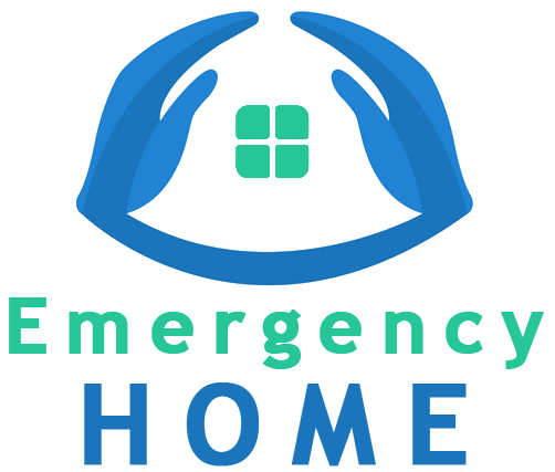 EMERGENCY HOME EN 1º PERSONA